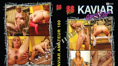 KAVIAR AMATEUR / Kaviar Amateur No.100