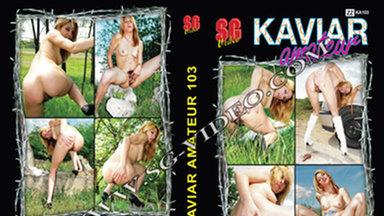 KAVIAR AMATEUR / Kaviar Amateur No.103