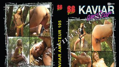 KAVIAR AMATEUR / Kaviar Amateur No.105