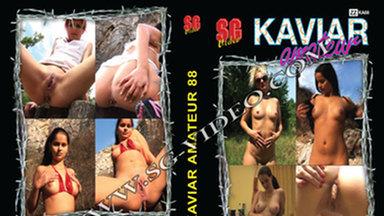 KAVIAR AMATEUR / Kaviar Amateur No.88